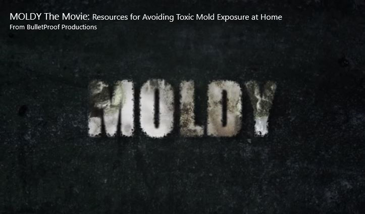 Dallas Texas mold remediation inspection service movie about mold sickness and illness